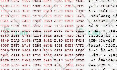nand-data2