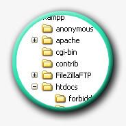 Sauvegarde et organisation des dossiers et des fichiers (hiérarchie et nommage)